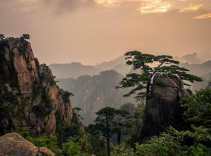 Huangshan scenic area -19