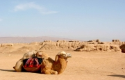 The Silk Road of XiAn Urumqi 10-Day Exploration Tour